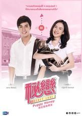 Senior Secret Love: Puppy Honey 1