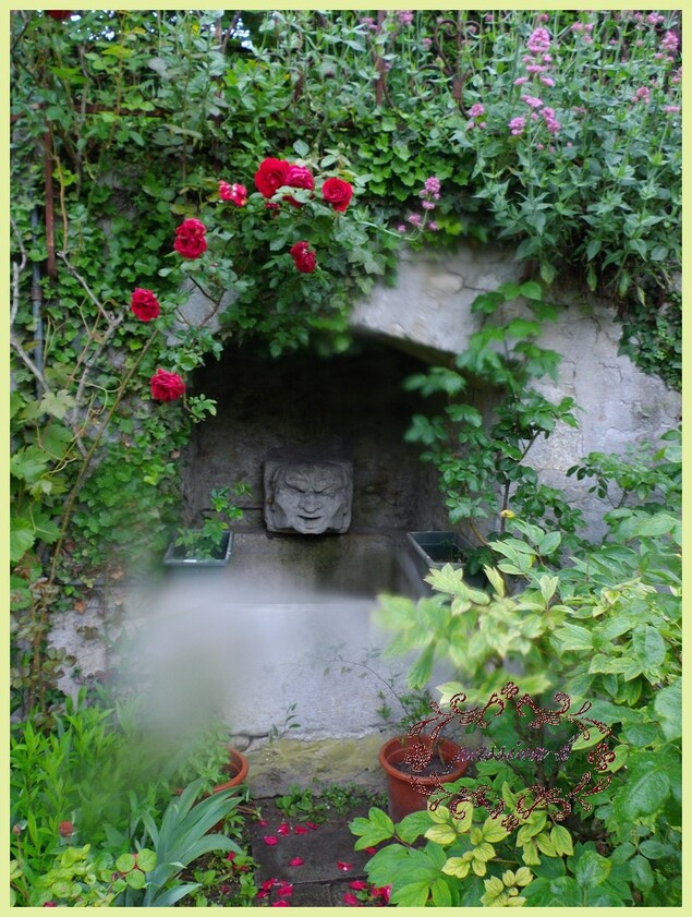 jardin secret (3)