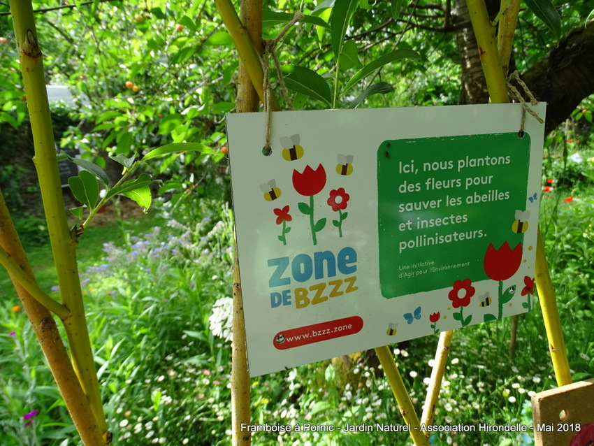 Pornic Jardin Naturel - Association HIRONDELLE - mai 2018