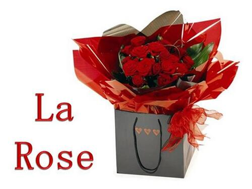 PPS MES CRERATIONS la beaute de la rose bicolor