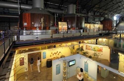 L'aventure du Sucre, excellent musée de Maurice