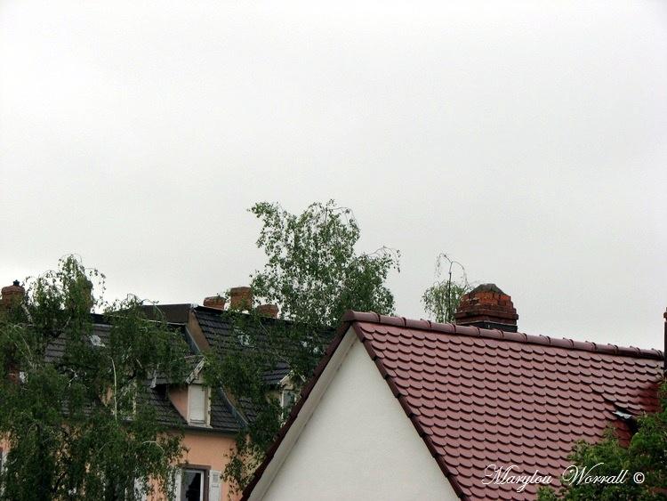 Ciel d'Alsace 364