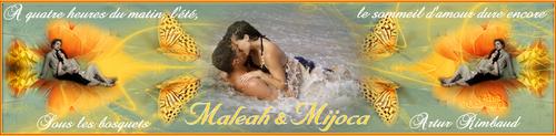 Banières Maleah et Mijoca suite 4