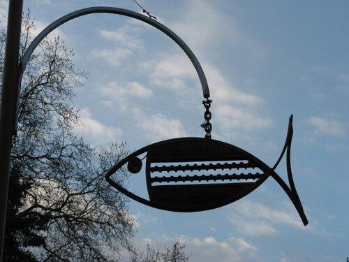 [projet 52-2018] semaine 13 - poisson