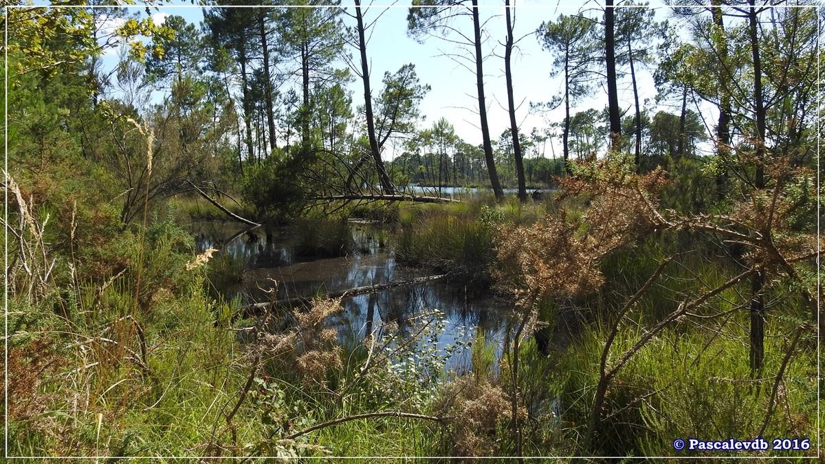 Lacs d'Hostens - Juillet 2016 - 8/10
