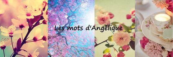 Les lectures d'angélique