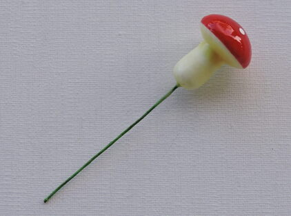 Champignon pour plante