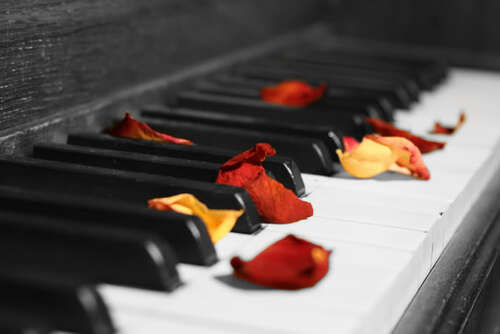ROSES ON PIANO