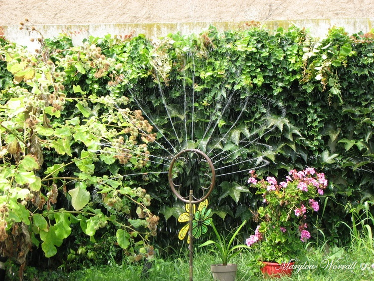 Ingersheim : Journée au jardin