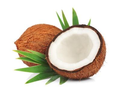 """Résultat de recherche d'images pour """"image noix de coco"""""""