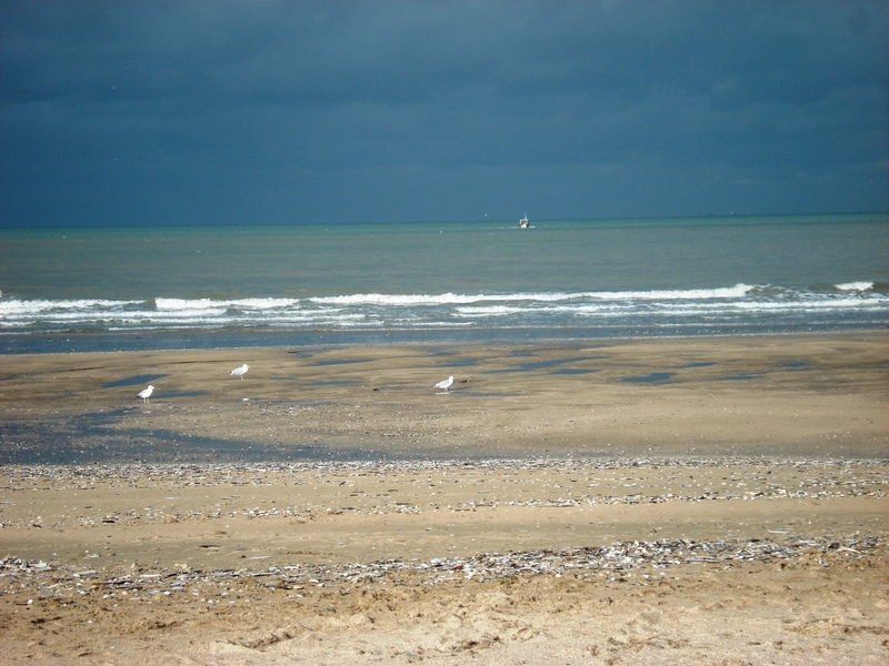 SUITE DES PHOTOS   TROUVILLE
