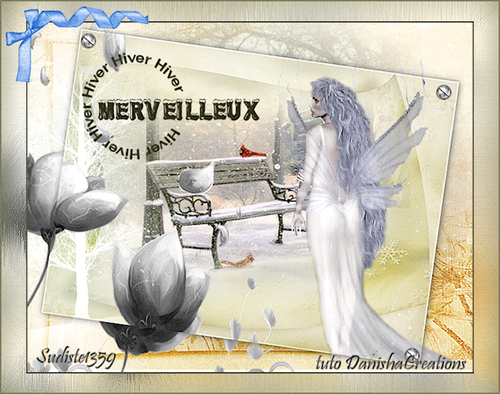GALERIE MERVEILLEUX HIVER