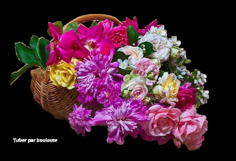 Quelques tubes fleurs