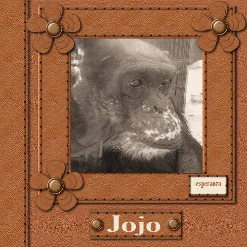 Mon ami Jojo