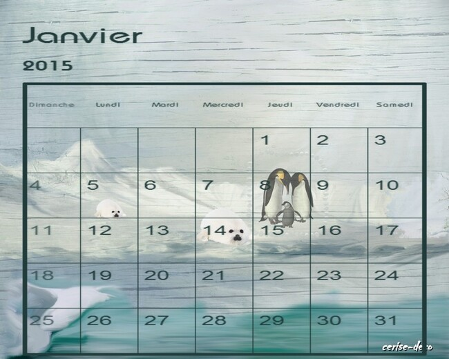 calendriers janvier 2015