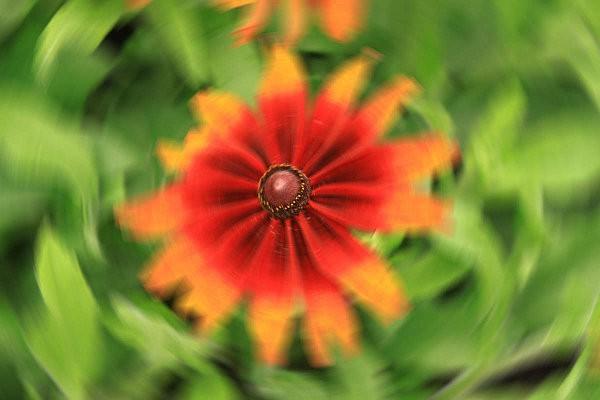 automne-2011-5468-bis.jpg