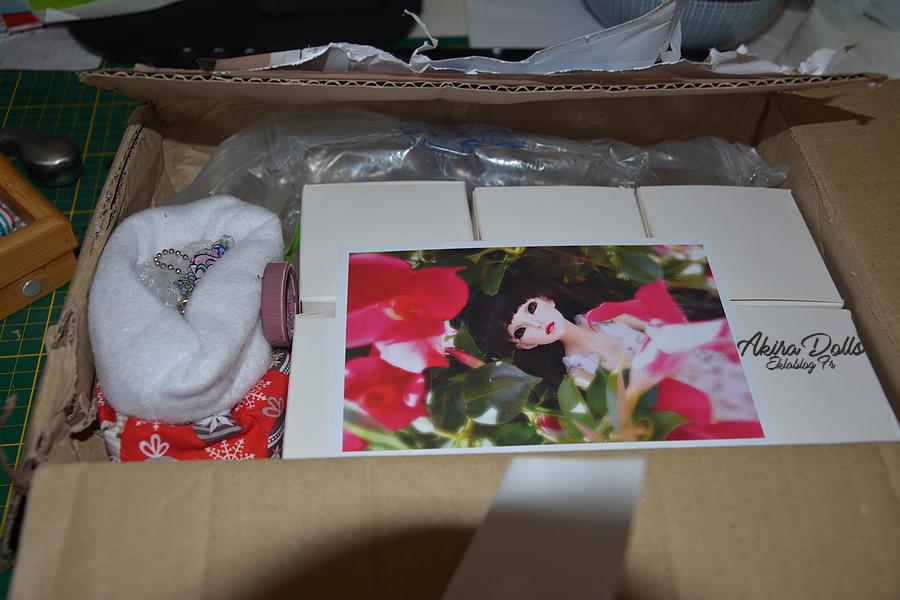 Unboxing Flower 1/12 BJD 3d print