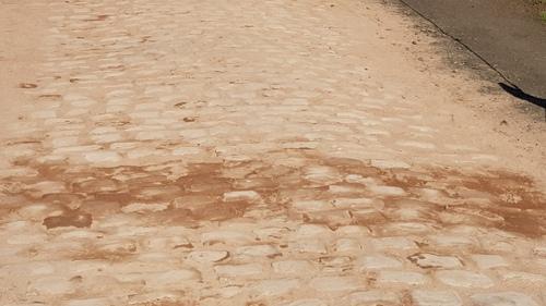 Bientôt Paris Roubaix