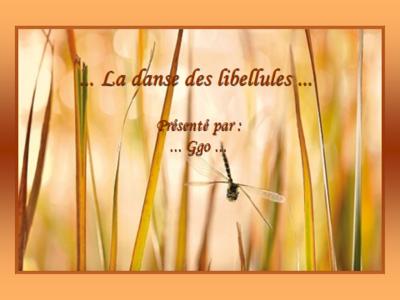 Blog de roselyne :Humanité, Nature,  Amour et lumière, La danse des libellules pps