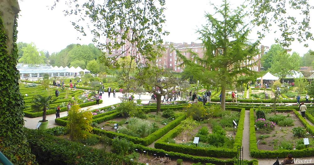 Jardin des Plantes en fête