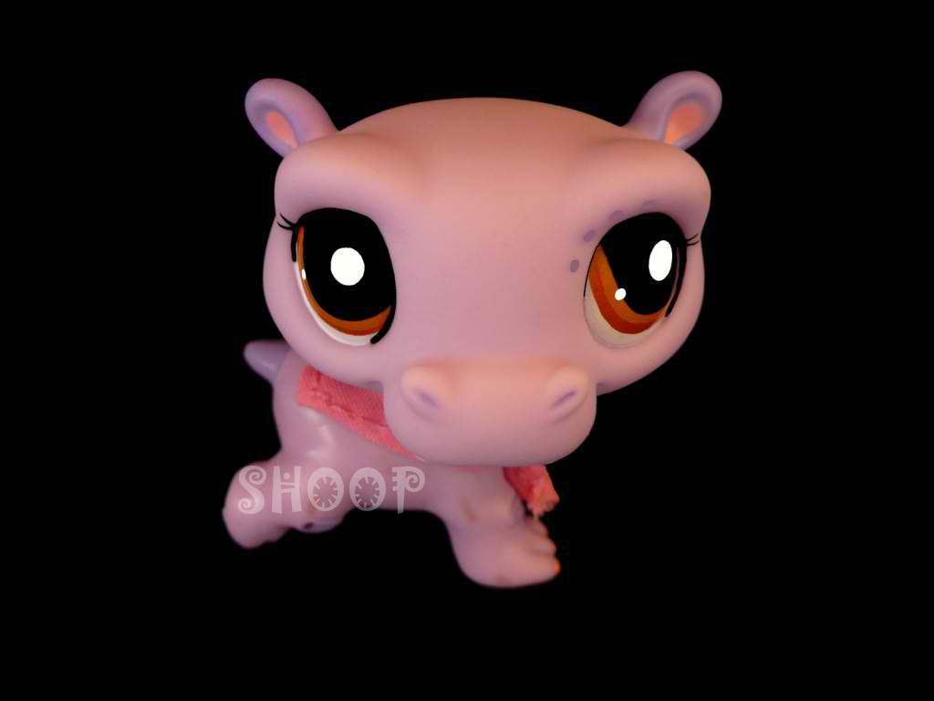 LPS 2043