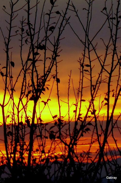 Soleil du soir en novembre