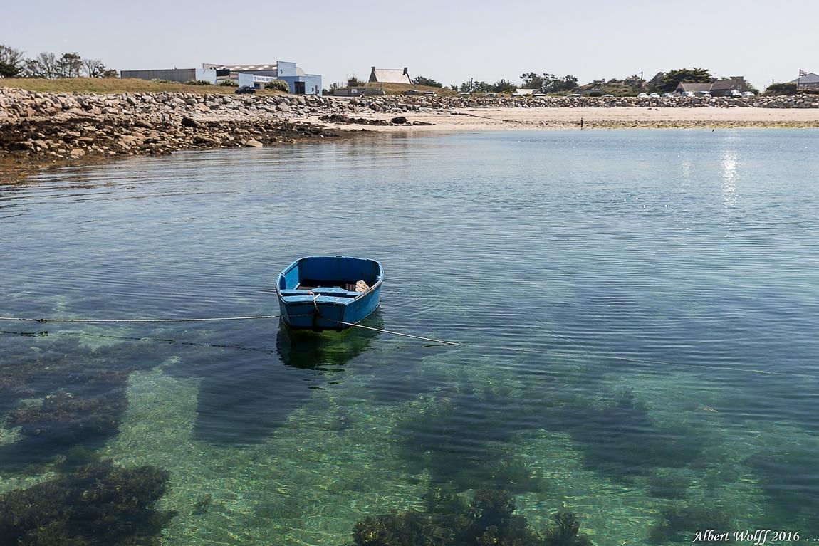 Breizh 2016 : la vie en bleu vert