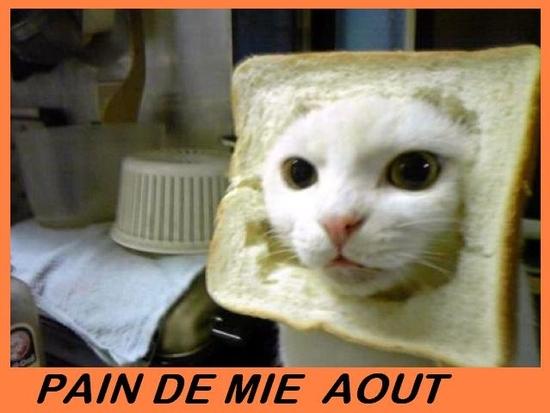 pain de mi-aout