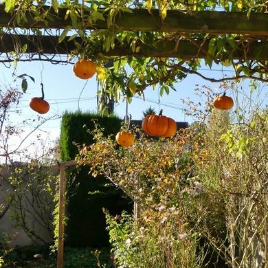 La petite terrasse version Halloween