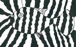 noir et blanc (zèbre de Vasarely)