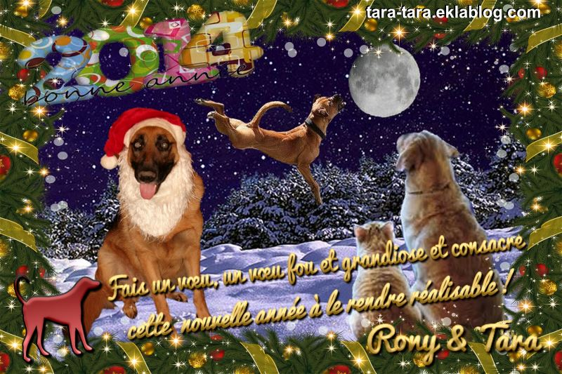 Bonne Année 2014...  Rony & Tara