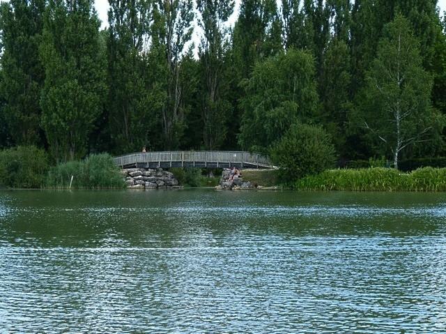 Lac de Vesoul-Vraivre - 13