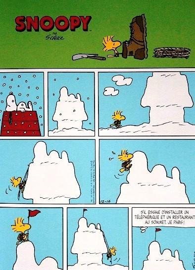 Snoopy-et-le-petit-monde-des-Peanuts-T.II-4.JPG