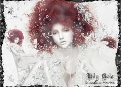 lily de ady graph(pfsx)