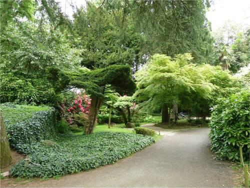 Maulévrier,le parc oriental (2)