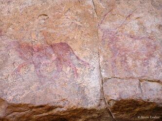 Peintures rupestres des Tassili N'Ajjer, Algérie 2006