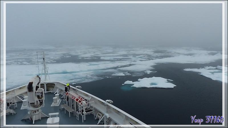 L'Austral rentre dans de la banquise en débâcle, 72° Nord, 168° Ouest - Mer des Tchouktches - Alaska