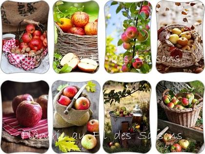 Les Pommes ! cartonnettes