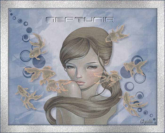 Neptunia de Saturnella