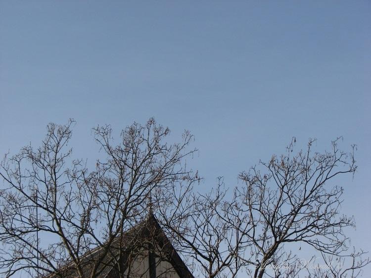 Ciel d'Alsace 400