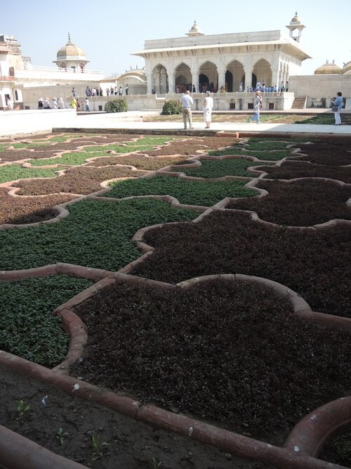 Inde 2014- Jour 11- Le fort d'Agra