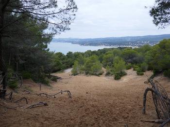 """Sur la """"dune plaquée"""", face à la Baie de saint-Cyr"""