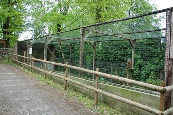 Parc animalier Bouillon 2013 enclos 172