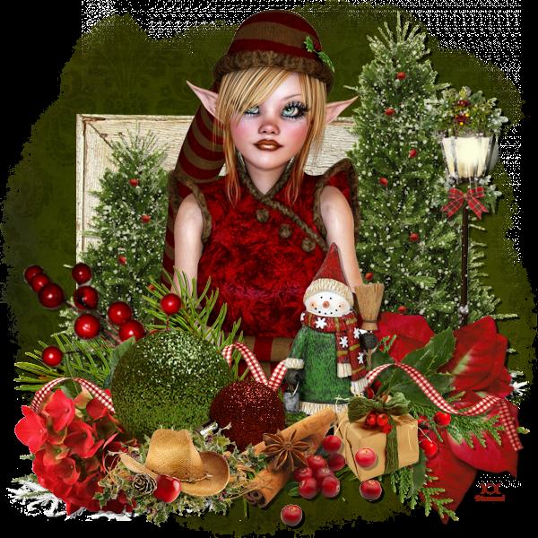 "Tutoriel ""Homespun Christmas"" de Colinda"