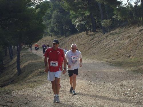 La ronde du terroir 2011 : trail 13km 300m de dénivelé