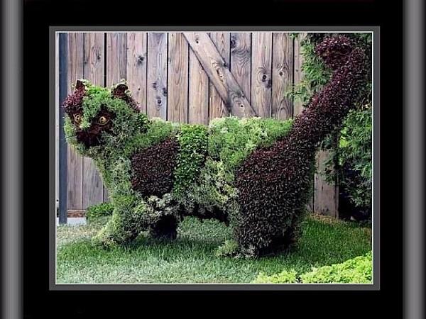 capeau-le-jardinier5.jpg