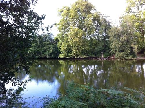 Le petit étang vers le camping les Chênes