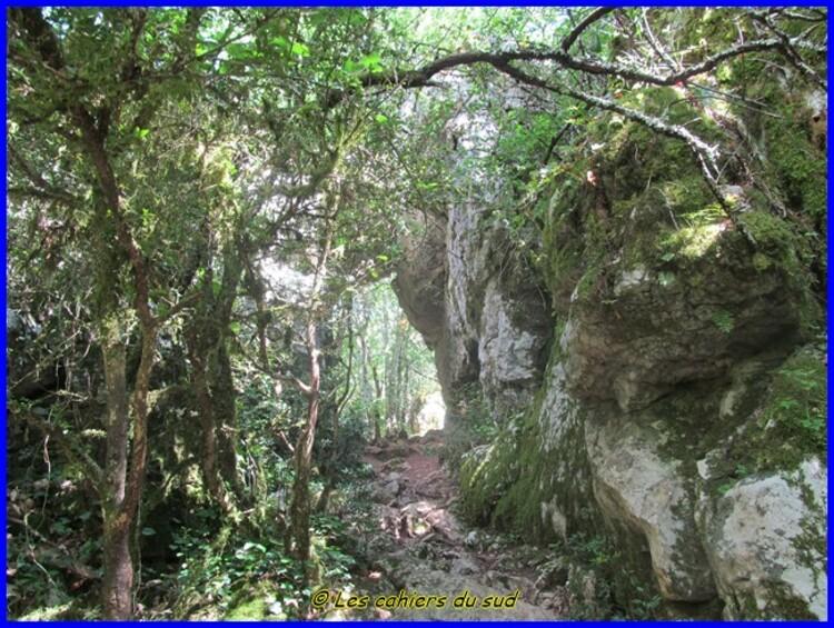 Sud Ardèche, le sentier de la Vierge