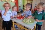 Petits de VIS : la compote de pommes