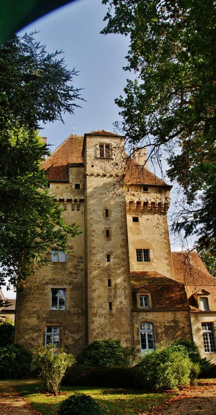 Donjon de l'ancien Château ( 15 Em siècle ) - Nérondes
